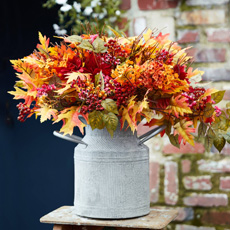 Outdoor Safe Fall Foliage