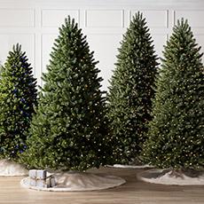 Best Sellers Christmas Trees