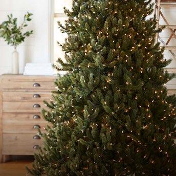 Balsam Hill Christmas Tree.Artificial Christmas Trees Wreaths Garlands Balsam Hill