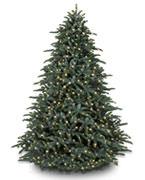 Künstliche Weihnachtsbäume ab 500€