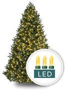 Weiße LEDs