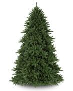 £200 - £299 Trees