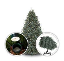 Flip Tree®